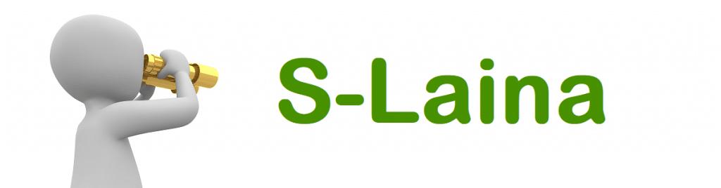 Kuvituskuva S-Lainasta kertovaan palveluesittelyyn.